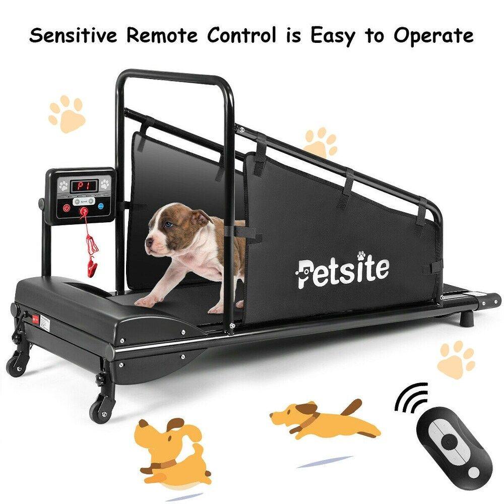 Pin On Dog Treadmills