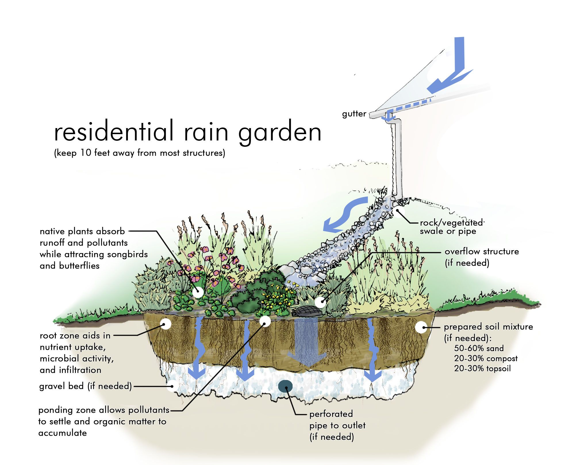 Rain Garden Design rain garden design Photos Of Rain Gardens Rain Garden Graphic Simulation From University Of Nebraska Extension