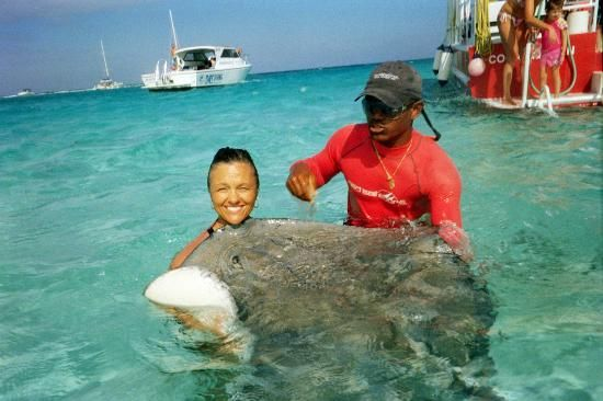 Stingray City: