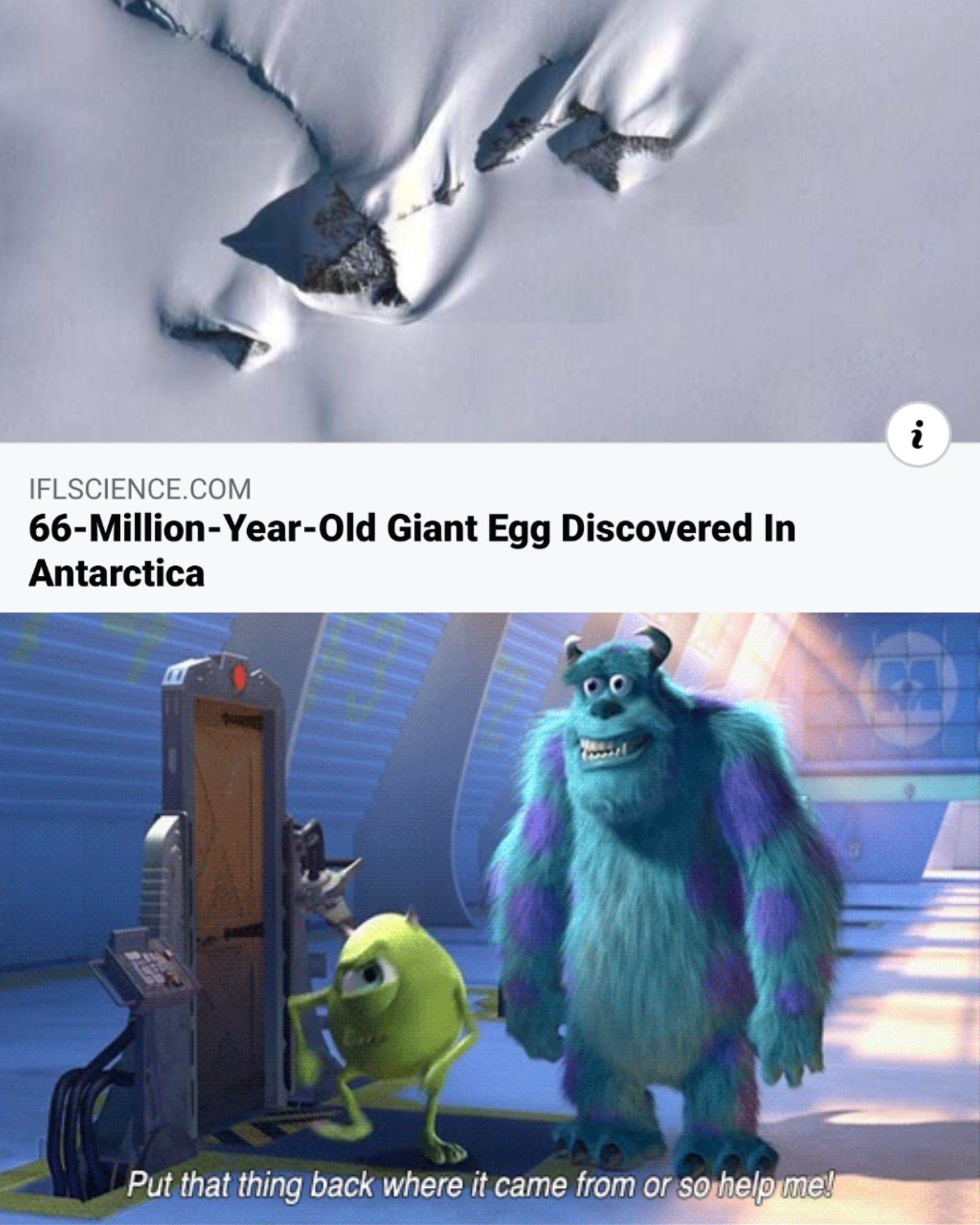 6 Top Guess What Meme Photo 2021 What Meme Memes Guess
