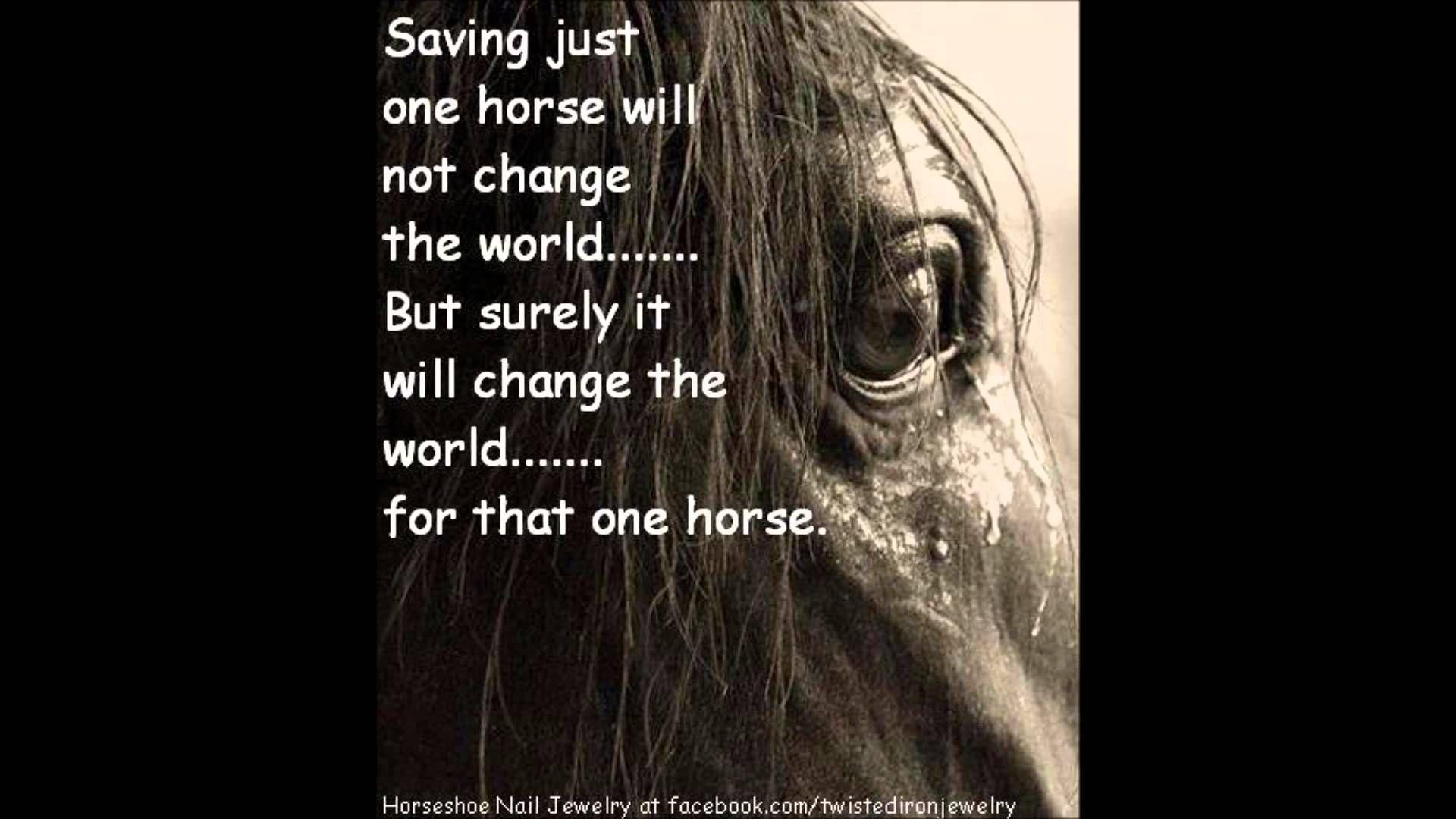 Sad Horse Quotes Quotesgram