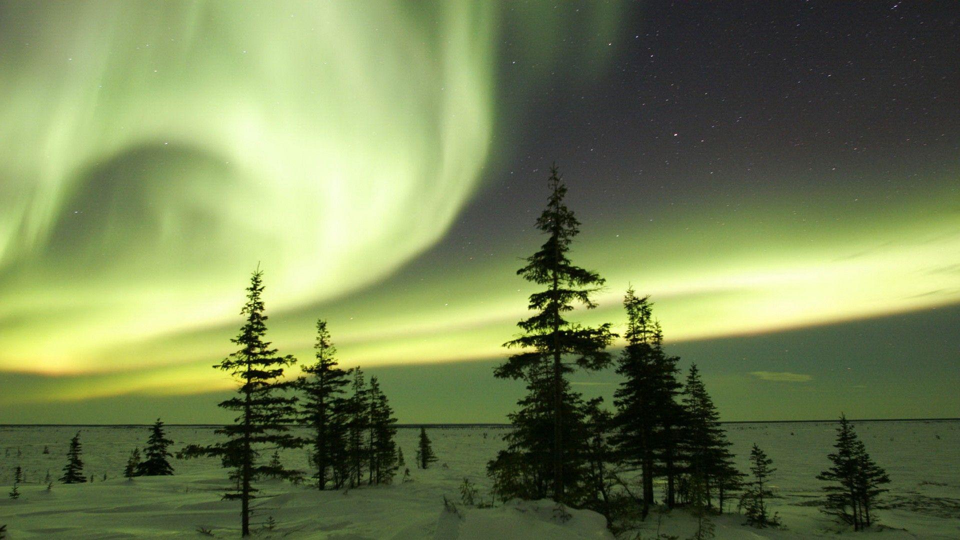 Best 25  Northern lights canada ideas on Pinterest | Northern ...