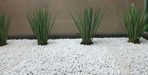 Piedras blancas para jardin jardines pinterest garden design modern landscaping y garden - Piedras blancas para jardin ...