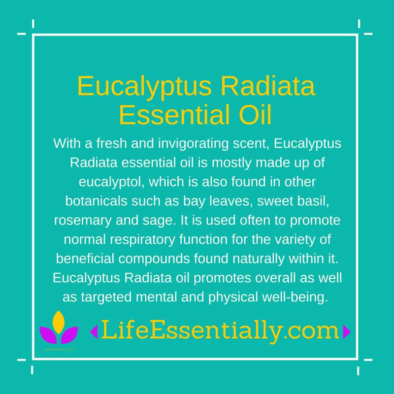 #eucalyptusradiata #essentialoil #lifeessentially #ameo