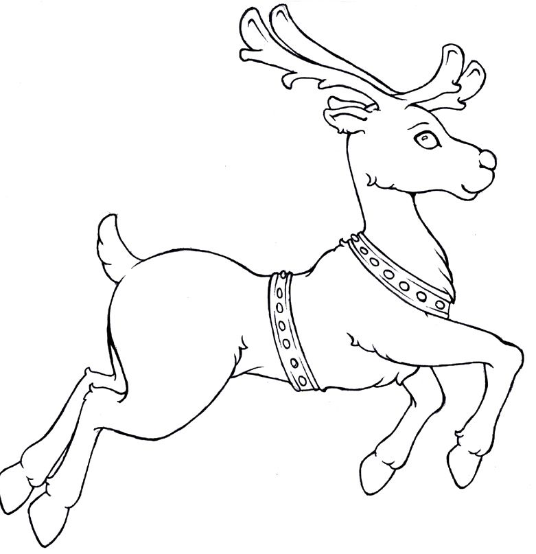 Reindeer Run Christmas Coloring Pages Kids Coloring Pages