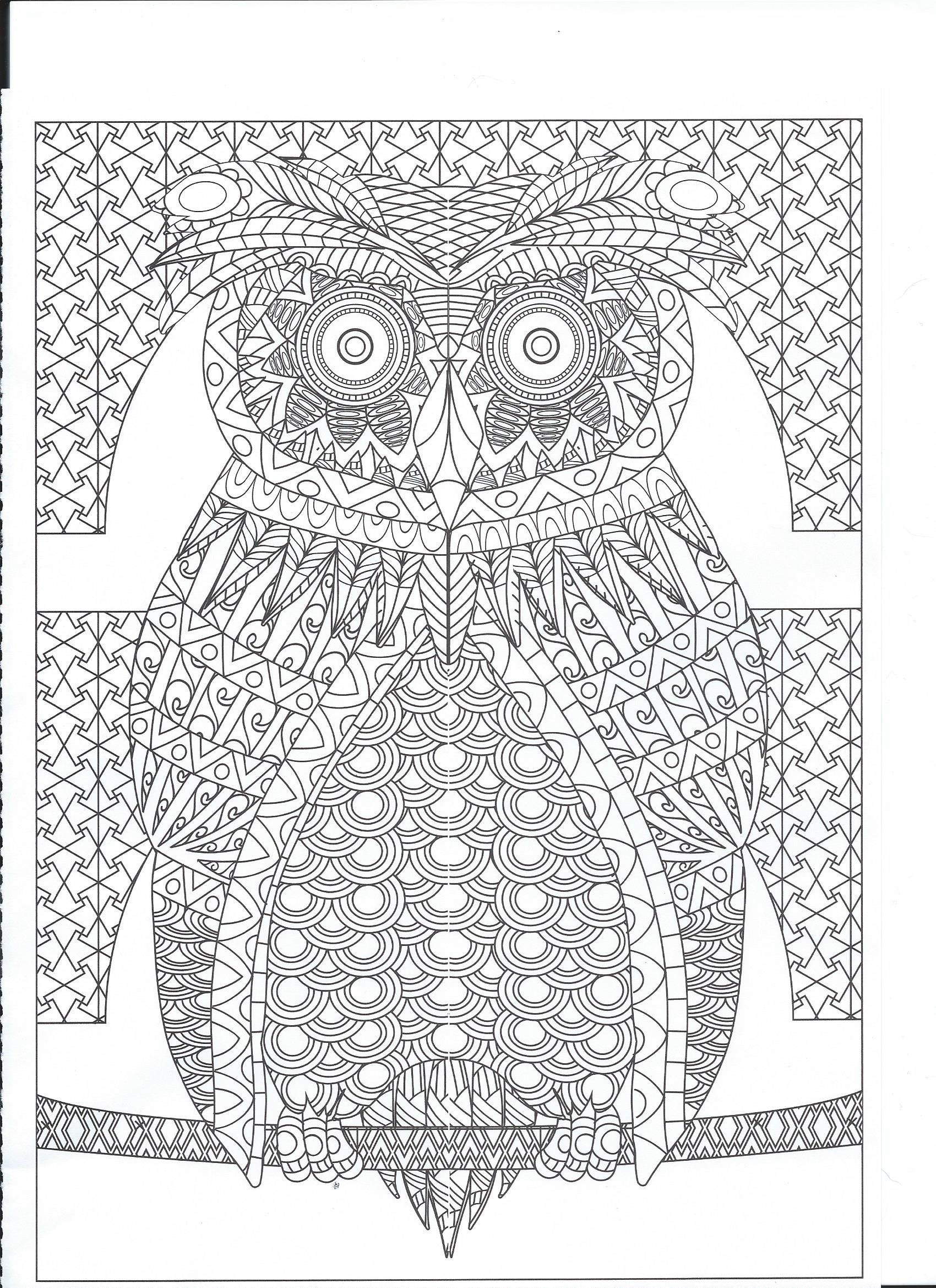 Colouring Pages Animal Pics Owls Zen In Coloring Printable Pictures Owl