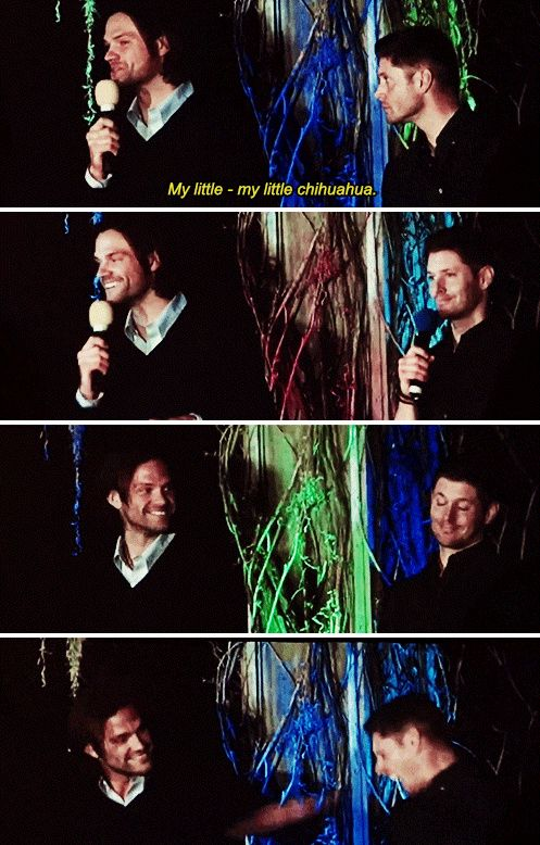 [gifset] Jensen and Jared at #BurCon14