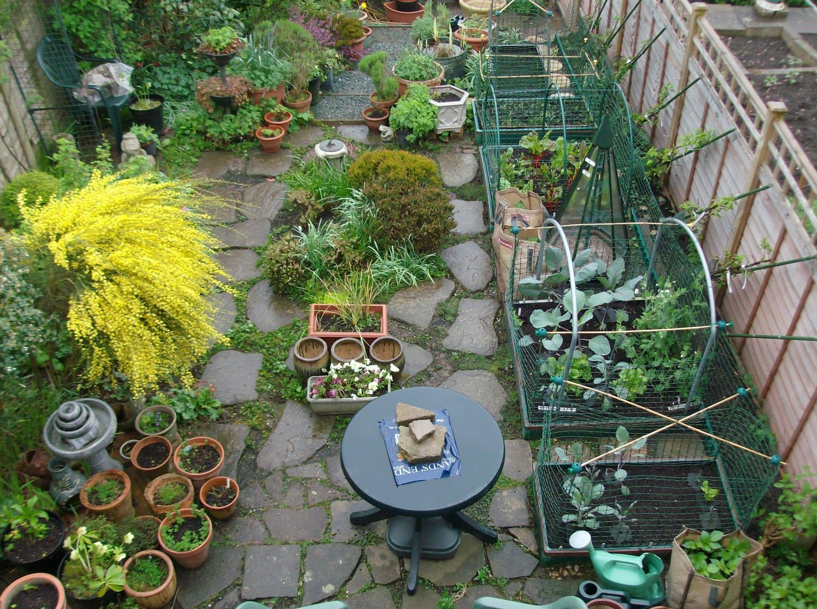 Good Lives Project: Growing your own in small spaces - a crop of new books!