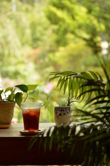 部屋の画像 by ekko.yさん   部屋とテーブルヤシとポトスとチランジアとカフェみたいな暮らしコンテストと観葉植物