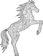 Pin Von Fetiya Mihammed Auf Horse Mandala Pferd Pferd Ausmalbilder Pferde