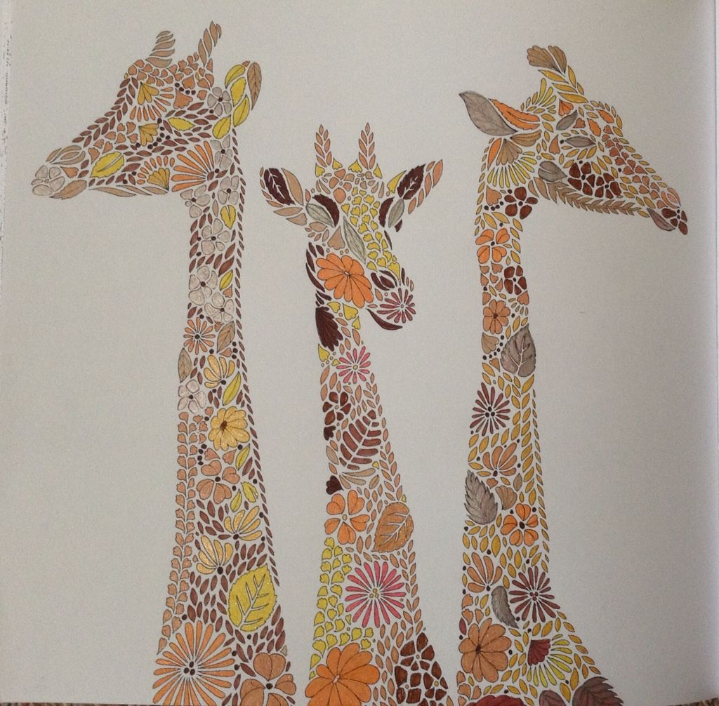 Giraffes From Millie Marottas Animal Kingdom Colouring Book October 2015