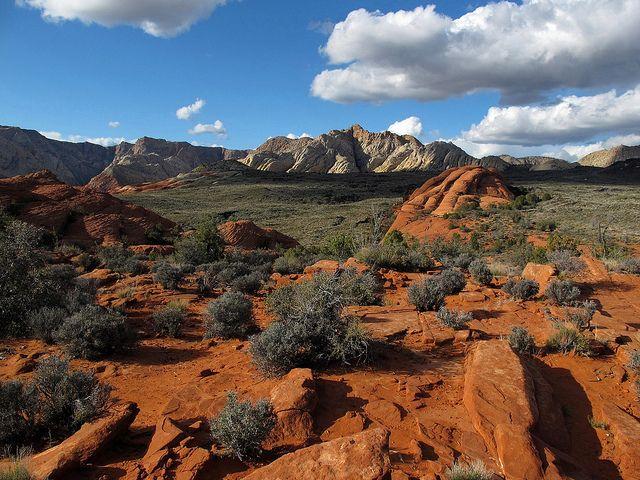 southwest-utah-red-canyon - ADV Pulse