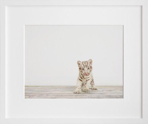 a cute print for the nursery by sharon montrose via 20x200.com