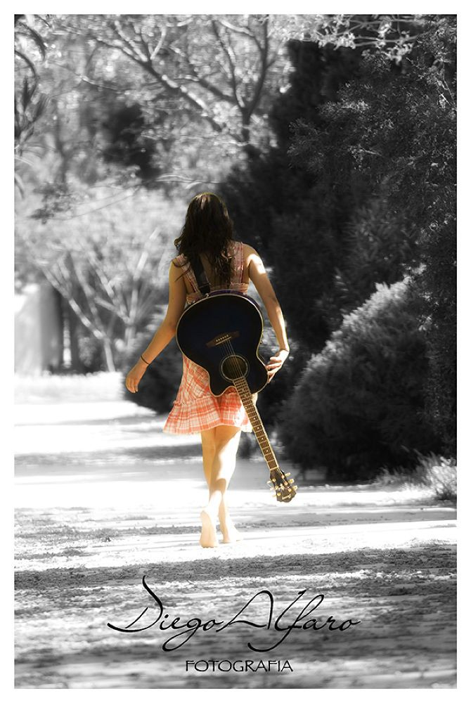 Mi camino by Diego Alfaro Morales