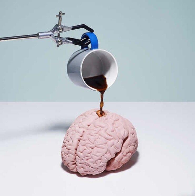 Directo al cerebro!!