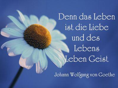 Pin Von Claudia Rodler Auf Spruche Saying Quotes Spruche Zum