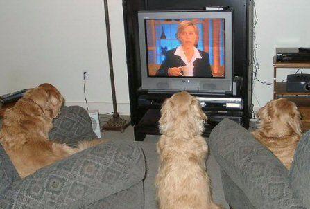 watching Ellen!!