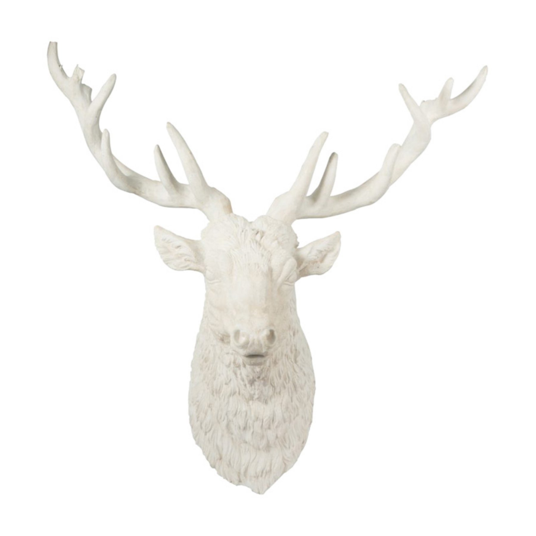 A And B Home Darby Deer Head Faux Taxidermy Faux Deer Faux Taxidermy Deer Heads Wall