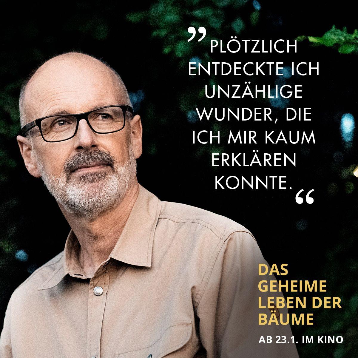 Pin Von Constantin Film Auf Das Geheime Leben Der Baume Constantin Film Filme Und Geheim
