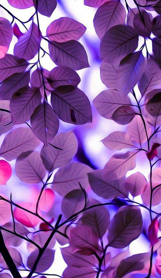 Purple discovered by rajiraji on We Heart It