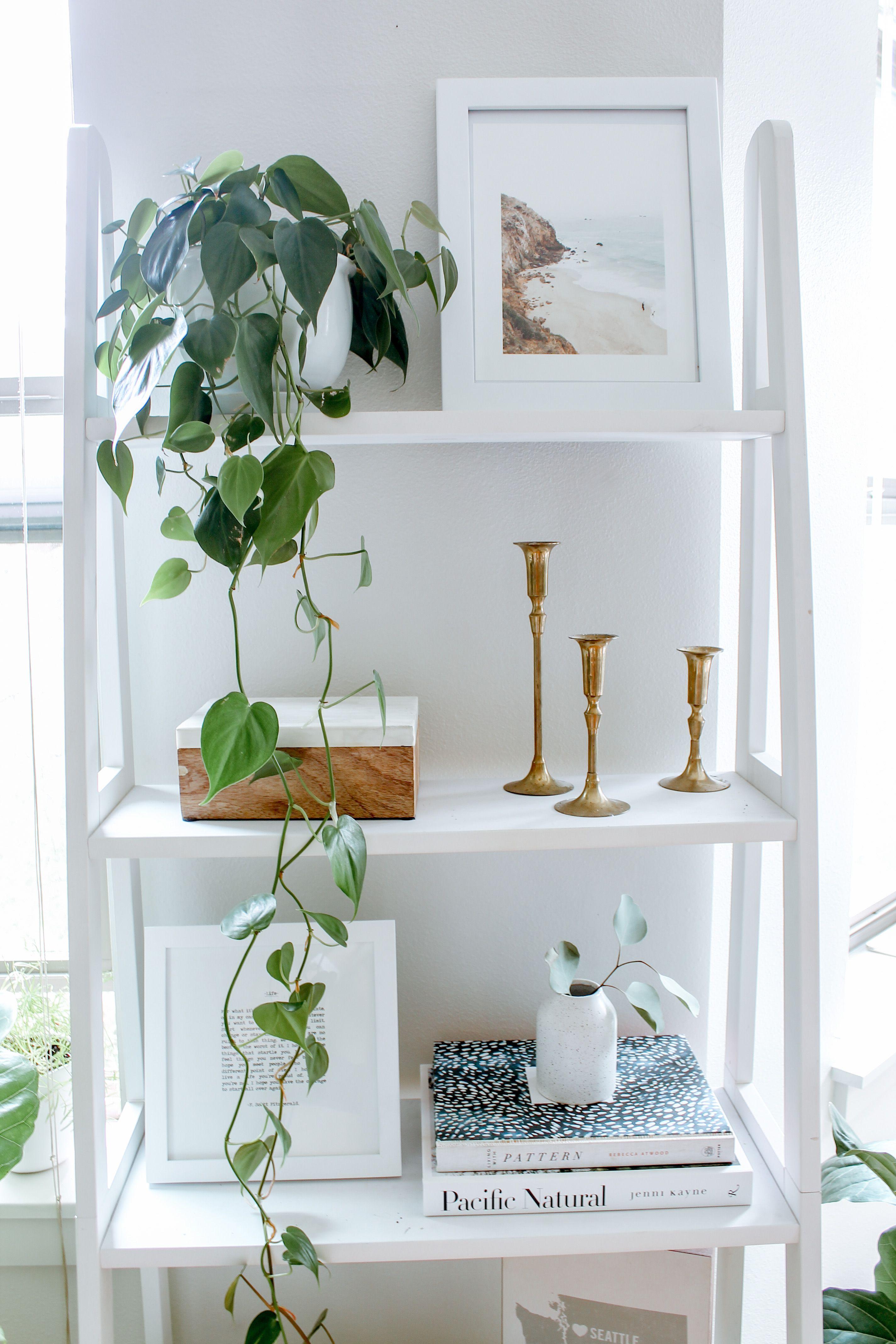 #ShelfStyling #Shelf #LadderShelf #HomeDecor #InteriorDesign #InteriorDecorating #DreamHome #ApartmentDecor #ShelfDesign