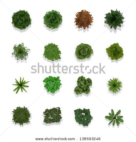 Trees top view for landscape vector illustration by