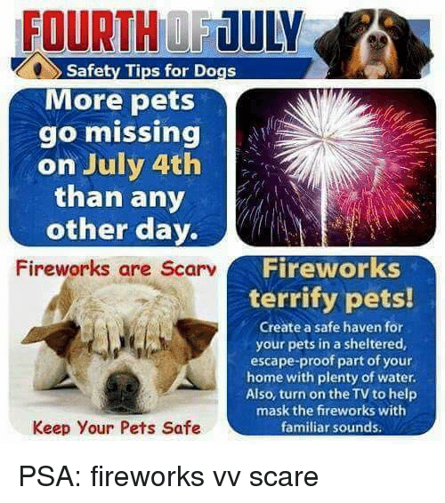 Fireworks Frighten Our Pets Prevent Your Pets From Running Away This July 4th Follow These Tips 1 Keep Pets Inside On July 4th Pet Safety Dog Safety Pets