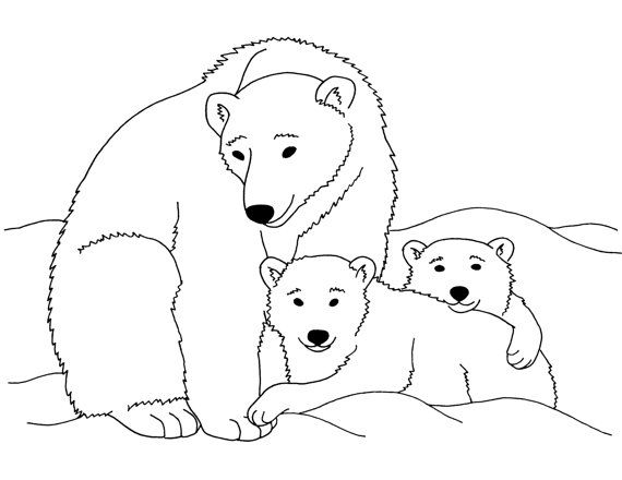 polar bears printable coloring page instant by