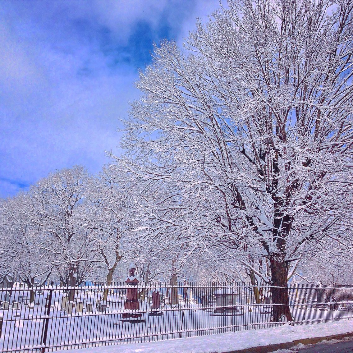 Snowy, cemetary in Altoona, Pa. January 23, 2015