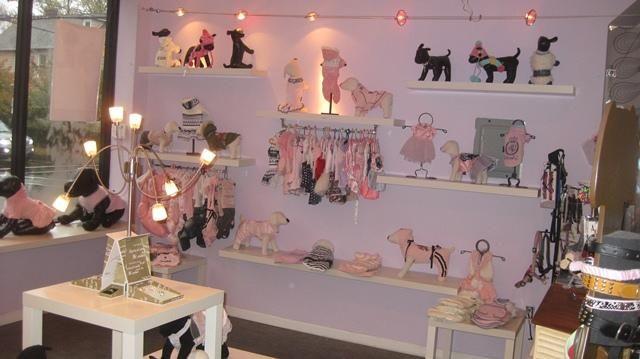 Quibus Paws Pet Boutique Grooming Salon Dog Grooming Salons Pet Boutique Grooming Salon