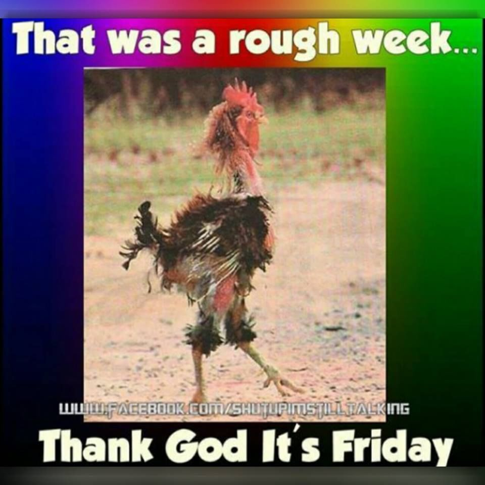 That Was A Rough Week Thank God It S Friday Friday Tgif Friday Quotes Thank God Its Friday Its Fr Friday Funny Pictures Friday Quotes Funny Its Friday Quotes