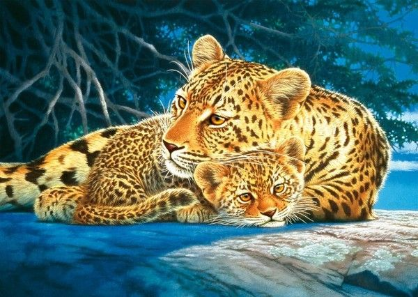 JOH NAITO | Animals | Pinterest | Animal