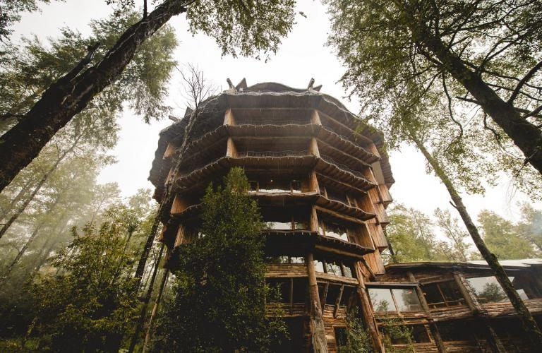 Chile, Huilo Huilo: Det smukke og sjove Hotel Nothofagus er noget helt særligt! Det er et super skønt hotel, som ligger midt ude i Huilo Huilos regnskov!