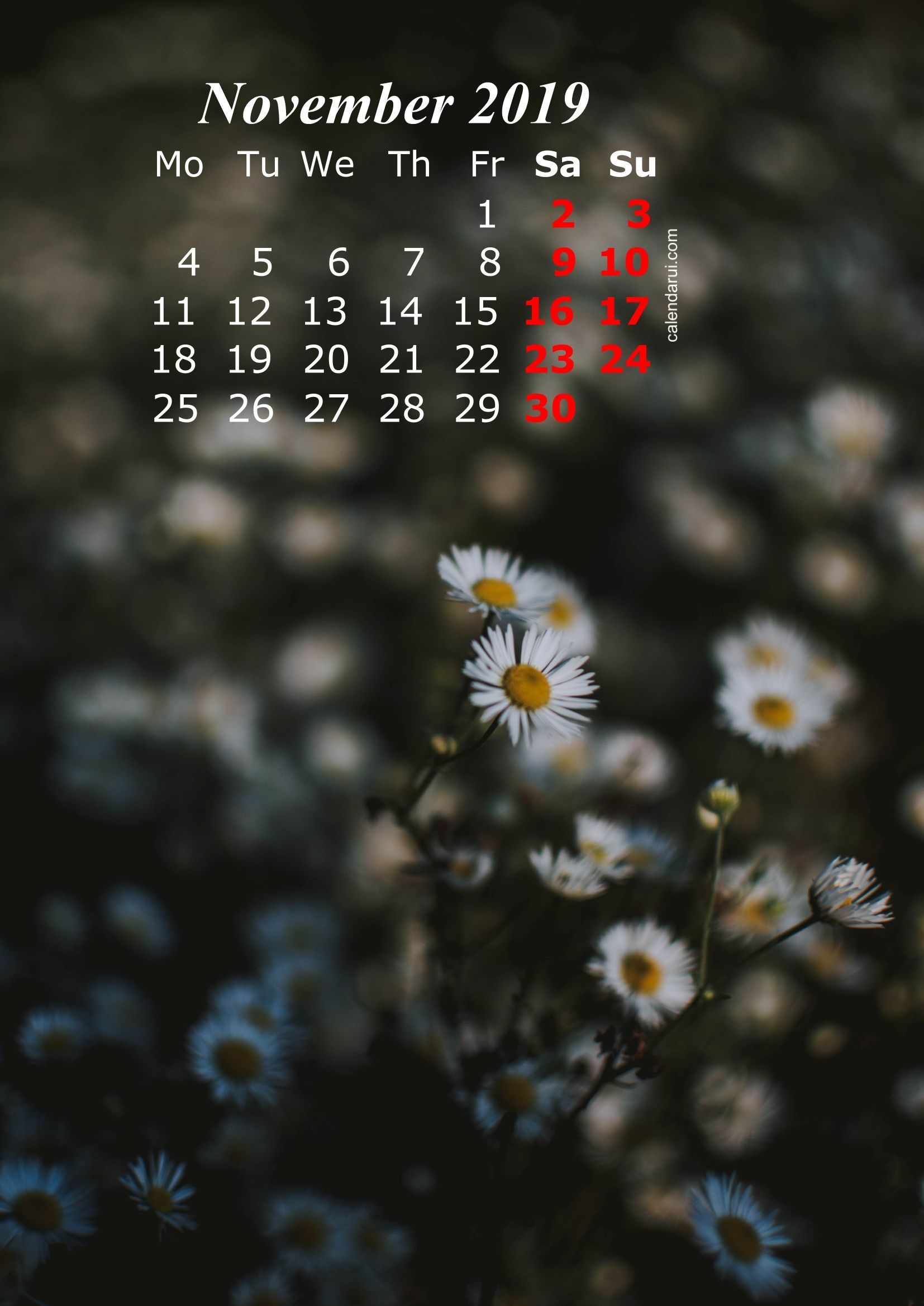 2019 Calendar Iphone Wallpaper Hd Calendar Wallpaper 2019