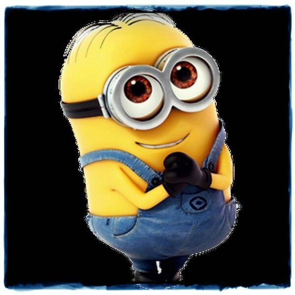 Cutest Minion Begging Minions Wallpaper Minions Cute Minions