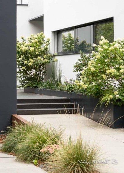 Vorgarten Modern Gestalten Idea