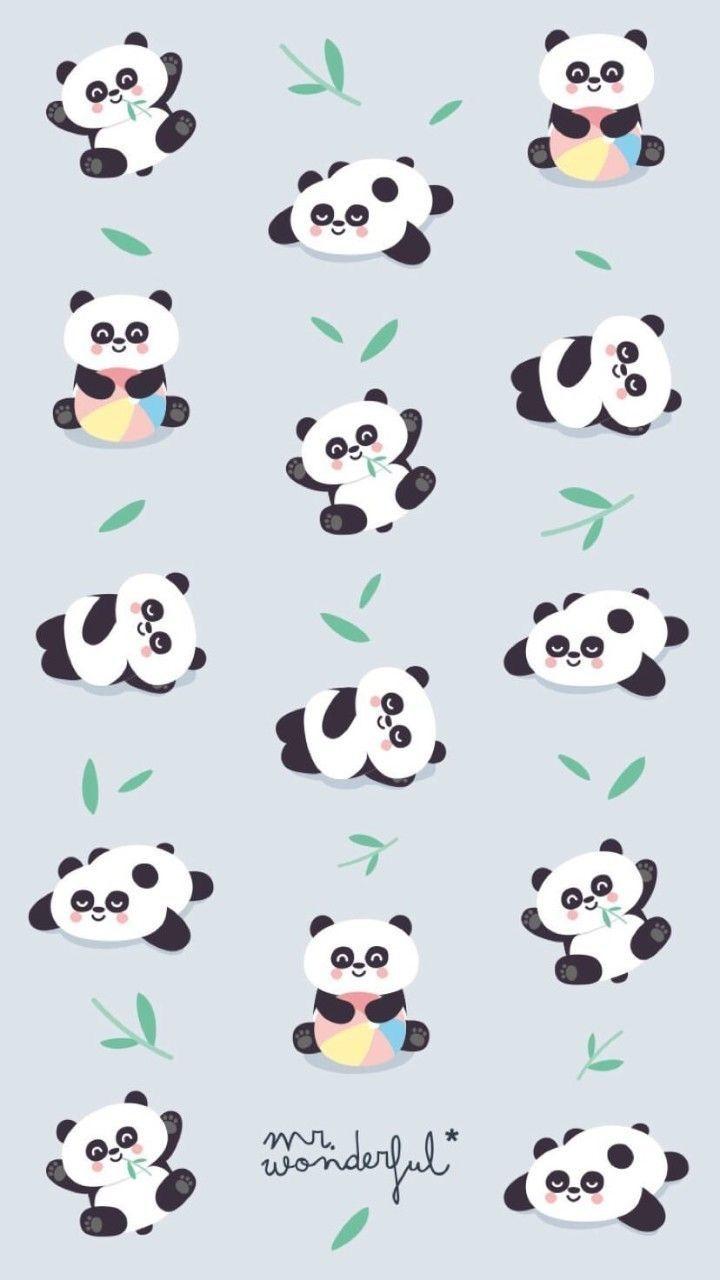 Pandas pandas pinterest fondos de pantalla panda for Mr wonderful fondos movil