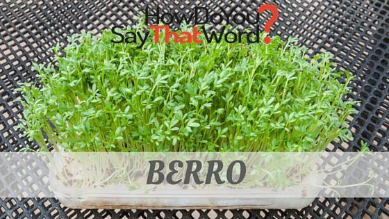 Say Berro Like An English Person Will Visit Howdoyousaythatword