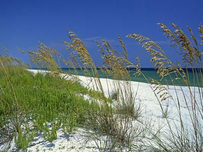 Pensacola Beach... it's hard to get excited about a beach vacation when this is in your backyard. :)