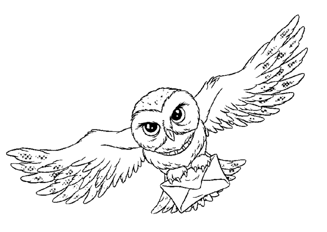 Owl Animal Coloring Pages Bird That Flies Open Wings Easy Coloring Pages For All Disegni Di Harry Potter Tatuaggi Di Harry Potter Edvige