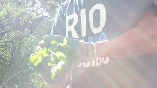Rio Eu Amo Eu Cuido
