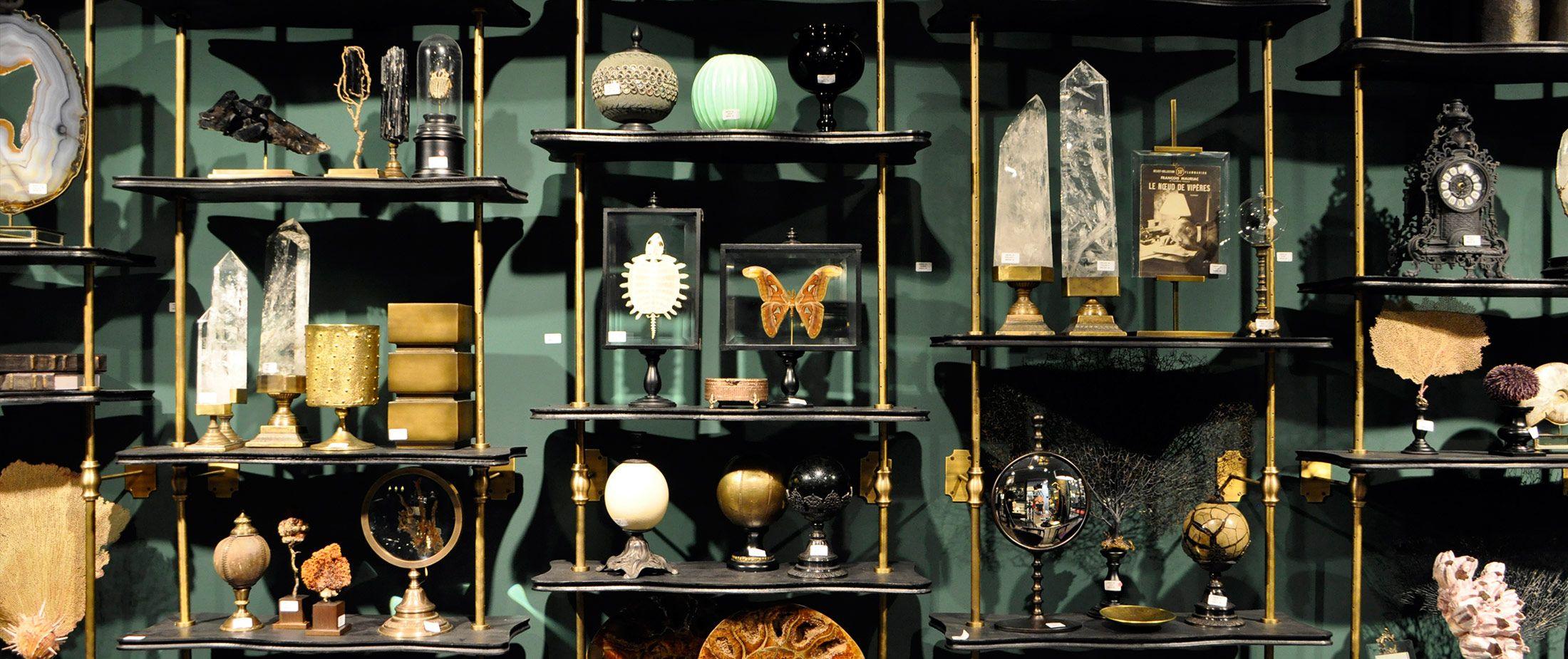 Objet de curiosit de co pinterest cabinet de curiosit s placards et - Cabinet de curiosite forum ...