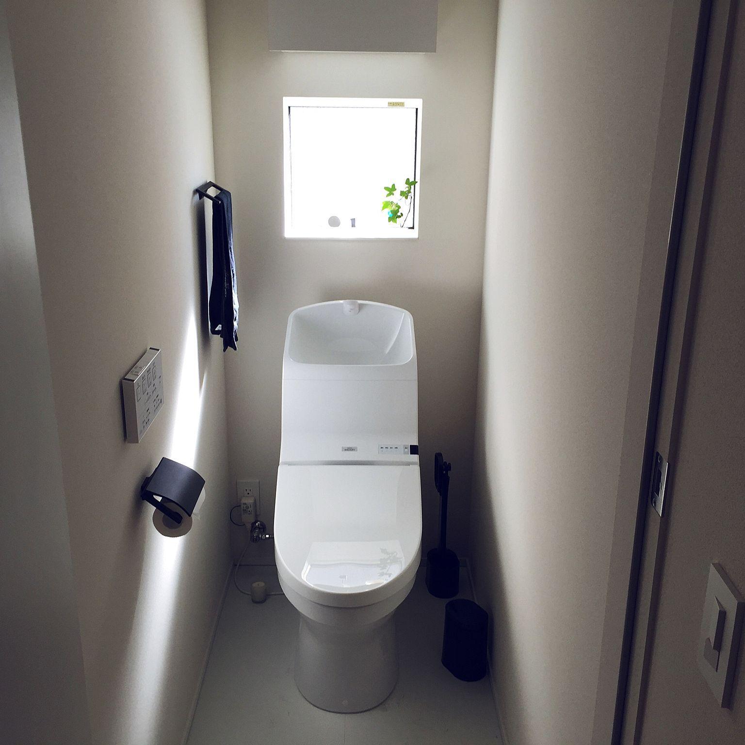バス トイレ サンワカンパニー アイビー水挿し 無印良品 カワジュン