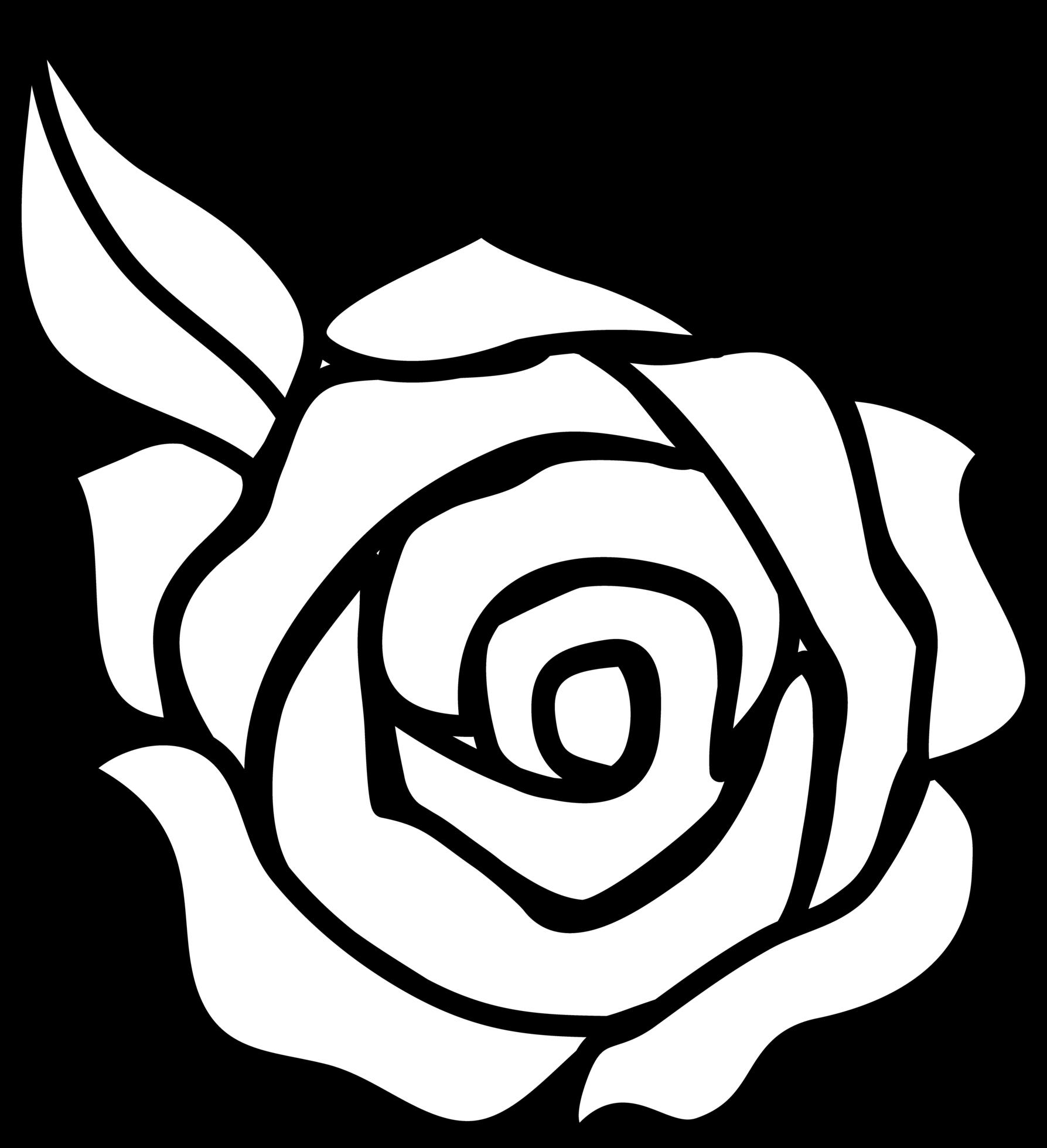 Simple Rose Drawings