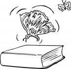 Butterfly Over The Book