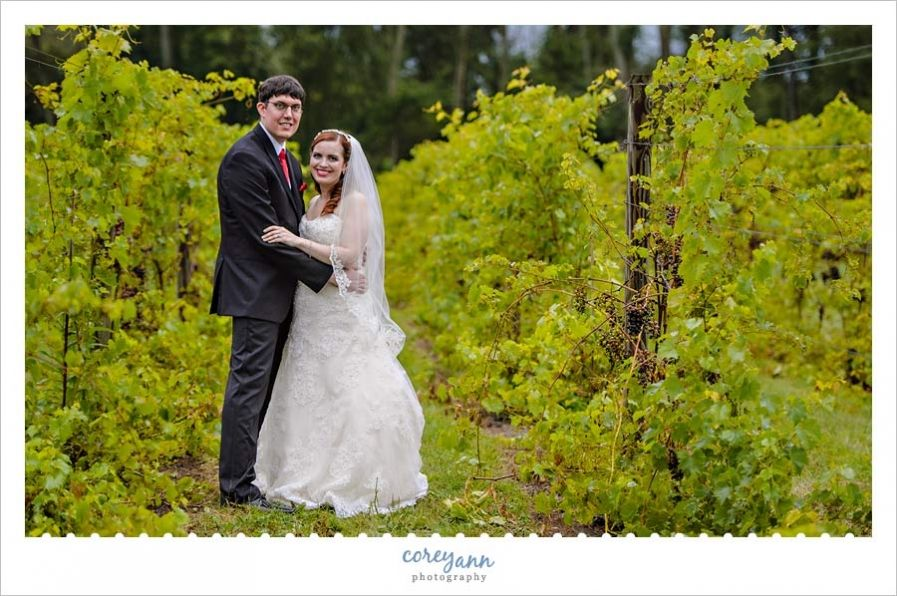 wedding picture locations akron ohio%0A Bride and Groom wedding portrait in Vineyard at  watersedgeoh in Ohio by  Corey Ann Photography