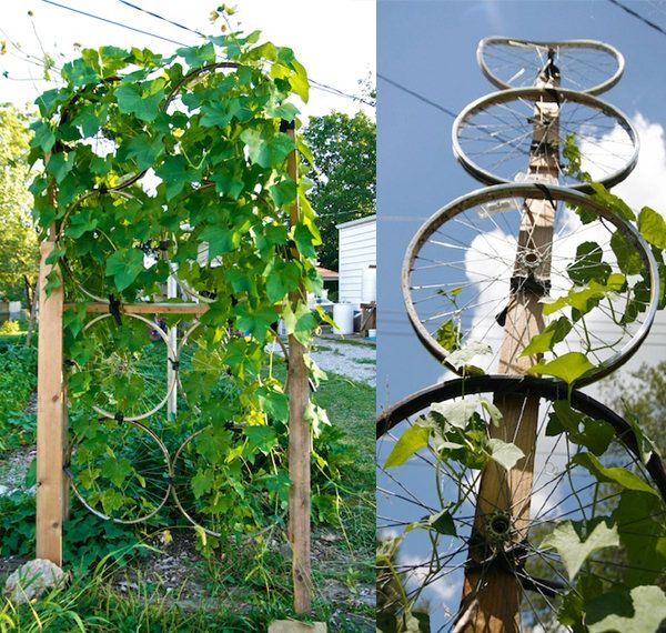 17 Best Upcycled Trellis Ideas For Garden | Gardens, Wheels And Design