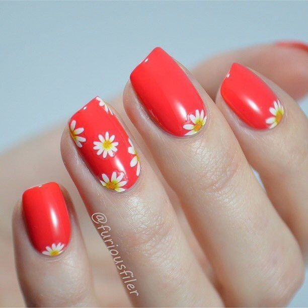 "Spring Daisy Mani By @furiousfiler Daisy Floral Decals(#23420)from http://ift.tt/UewJf8 . Use code ""BPSQ10"" to enjoy 10% Off for your order. #bornprettystore#nailsticker#floral#daisy#waterdecals#nailart by bornprettystore"