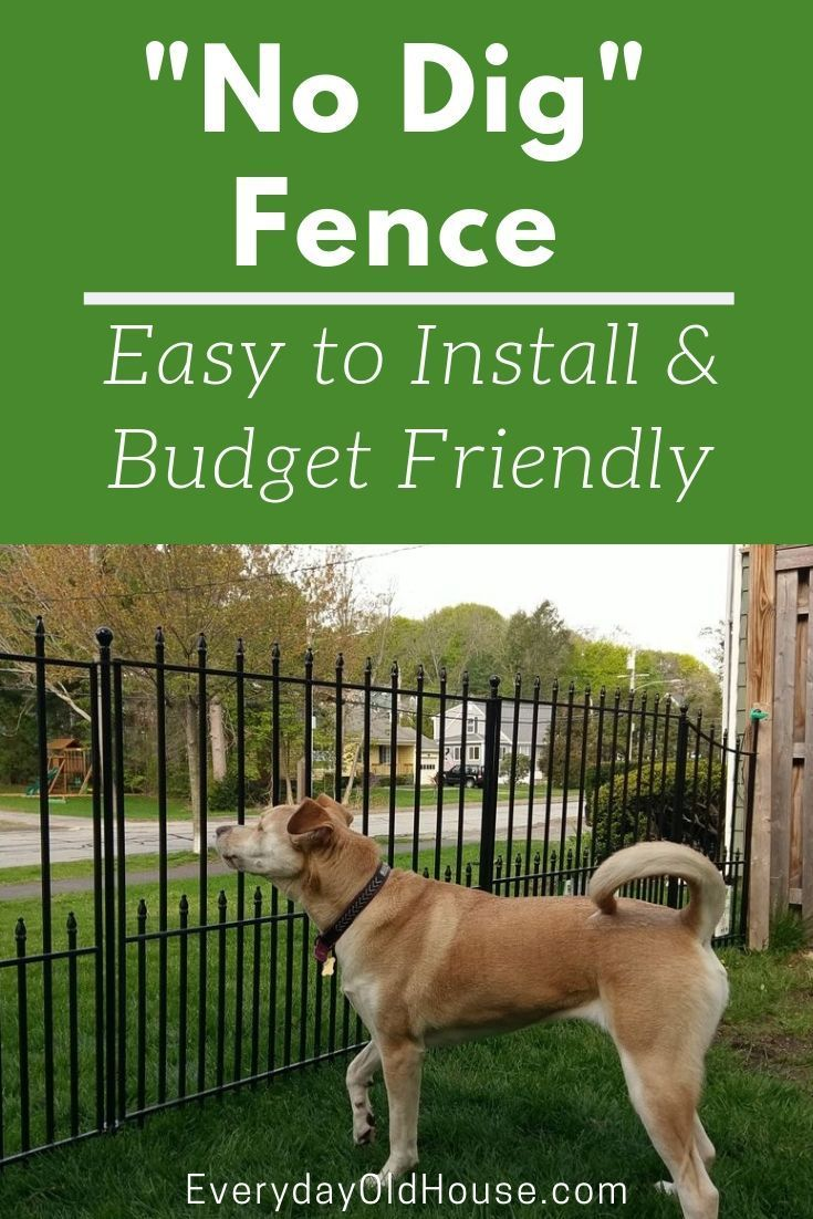 How to Install a No Dig Fence (Lowes Grand Empire XL ...
