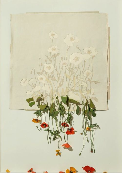 Peter Callesen Flowers